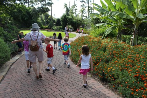 Mercer Botanic Gardens Hosts Botanical Time Tunnel Summer Camp The Paper Magazine Covering