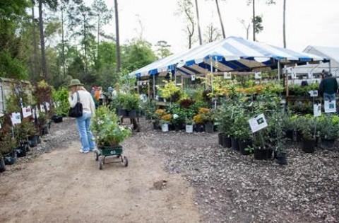 Mercer Botanic Gardens Announces 2018 March Mart Plant Sale | The ...