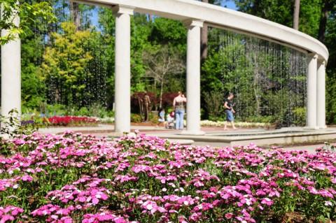 Mercer Botanic Gardens Announces Fall Winter 2015 Program